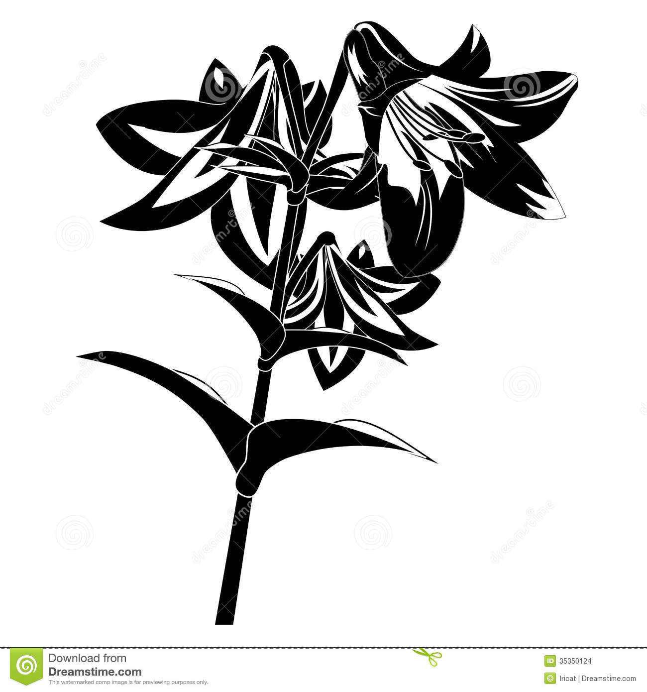 Black Flower Silhouette Stock Vector Illustration Of: Silhouette Flower Stock Vector. Illustration Of Isolated