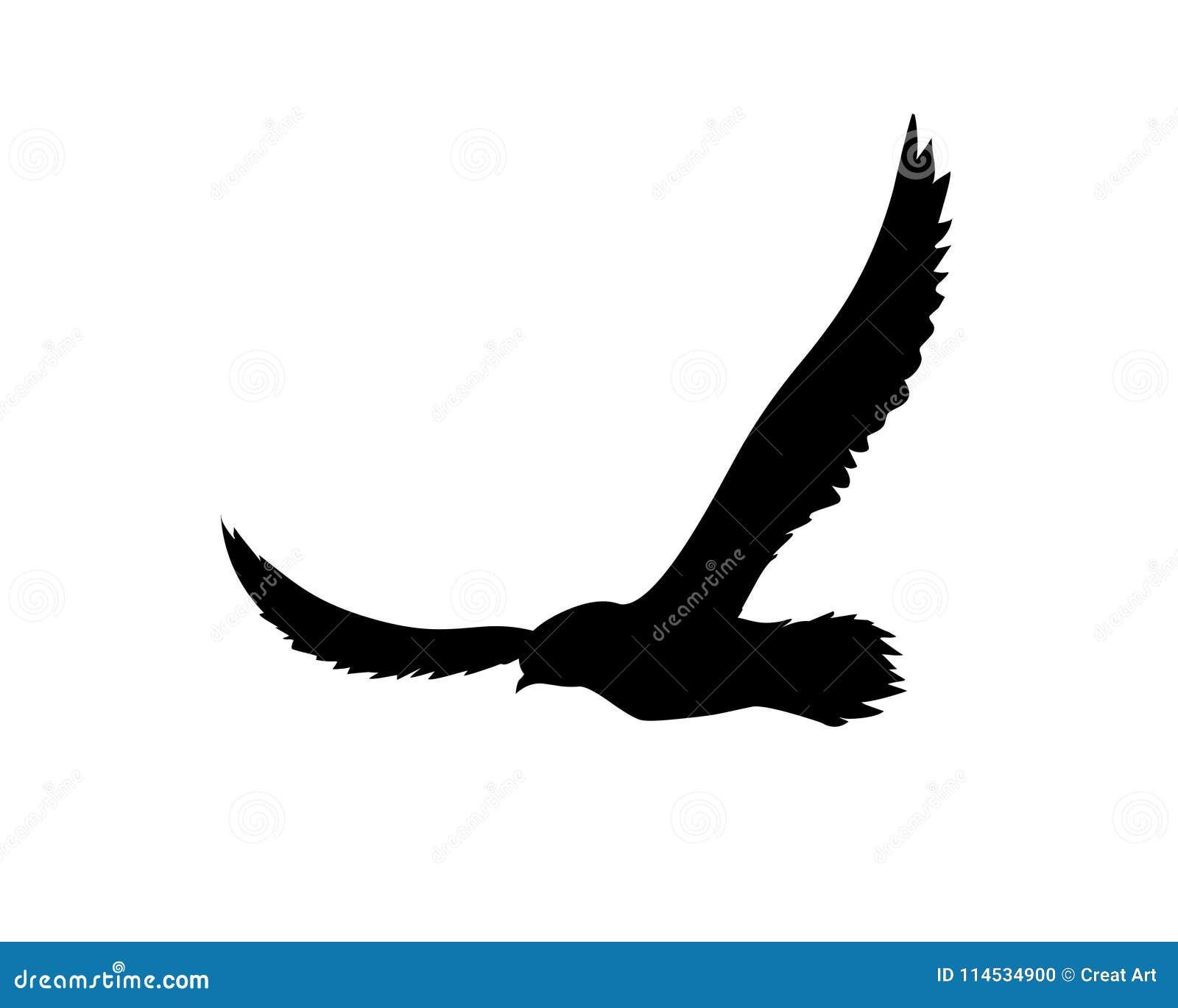 Flying Bird.Bird Silhouette On White Background Stock