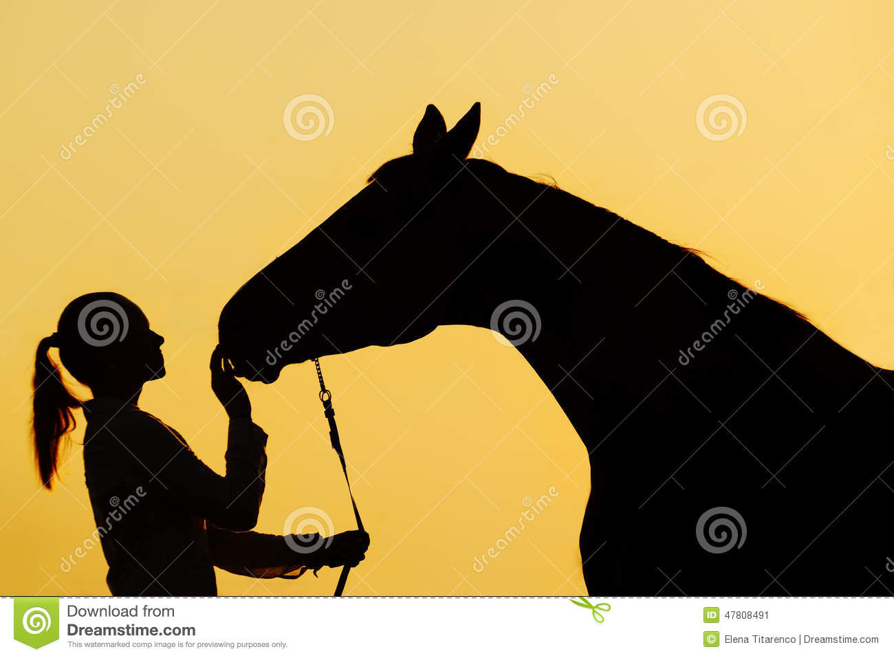 Invitation Only Horse is luxury invitations ideas