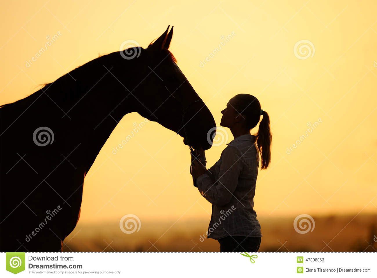Silhouette of girl with horse at the sunset