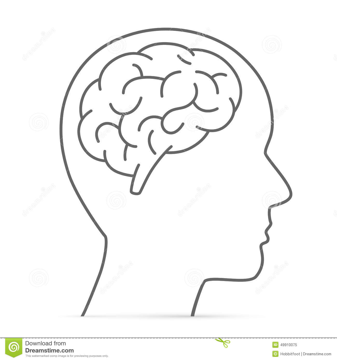 Stock Illustration Silhouette Head Brain Vector Illustration Image49910075 on head concept
