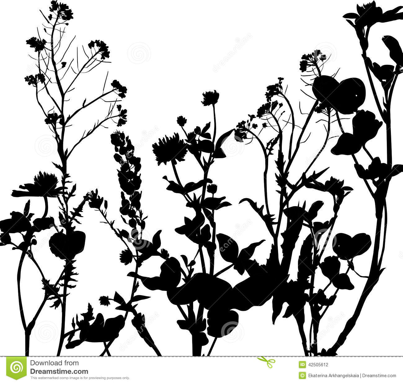 Silhouette Of Herbs And Flowers Stock Vector Image 42505612