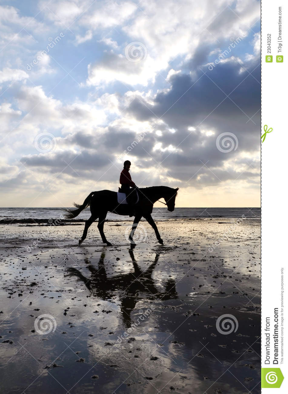 Silhouette Of A Horse Rider Walking On Beach Stock