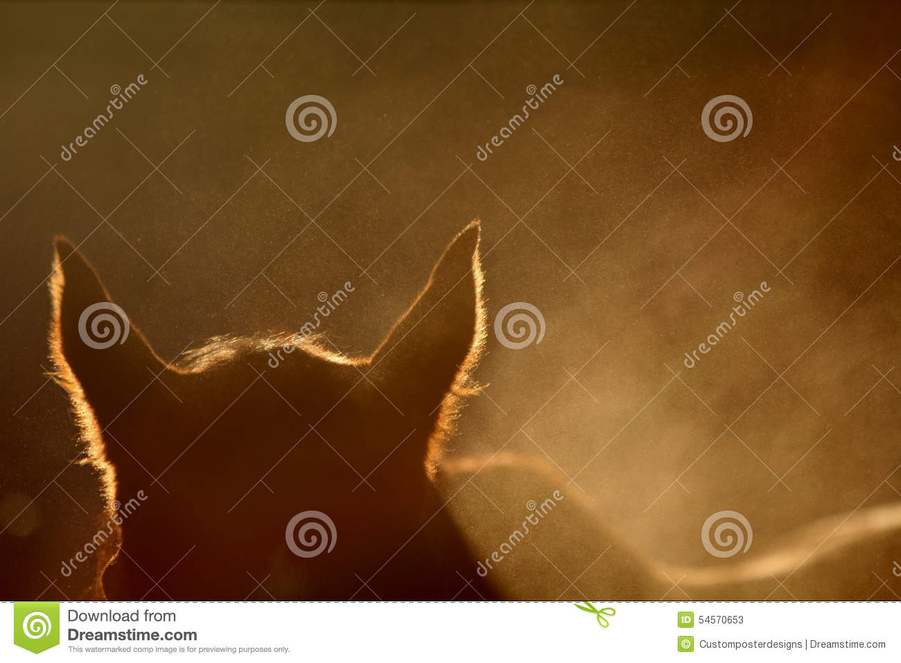 Download A silhouette of a horse. stock image. Image of designing - 54570653