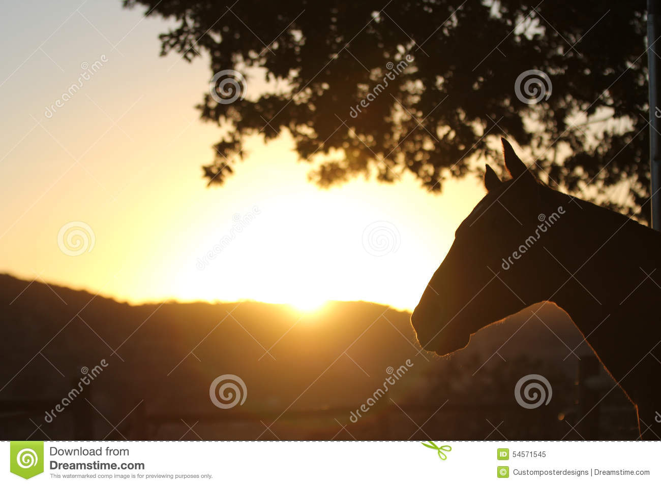 Download A silhouette of a horse. stock image. Image of dirt, colorful - 54571545