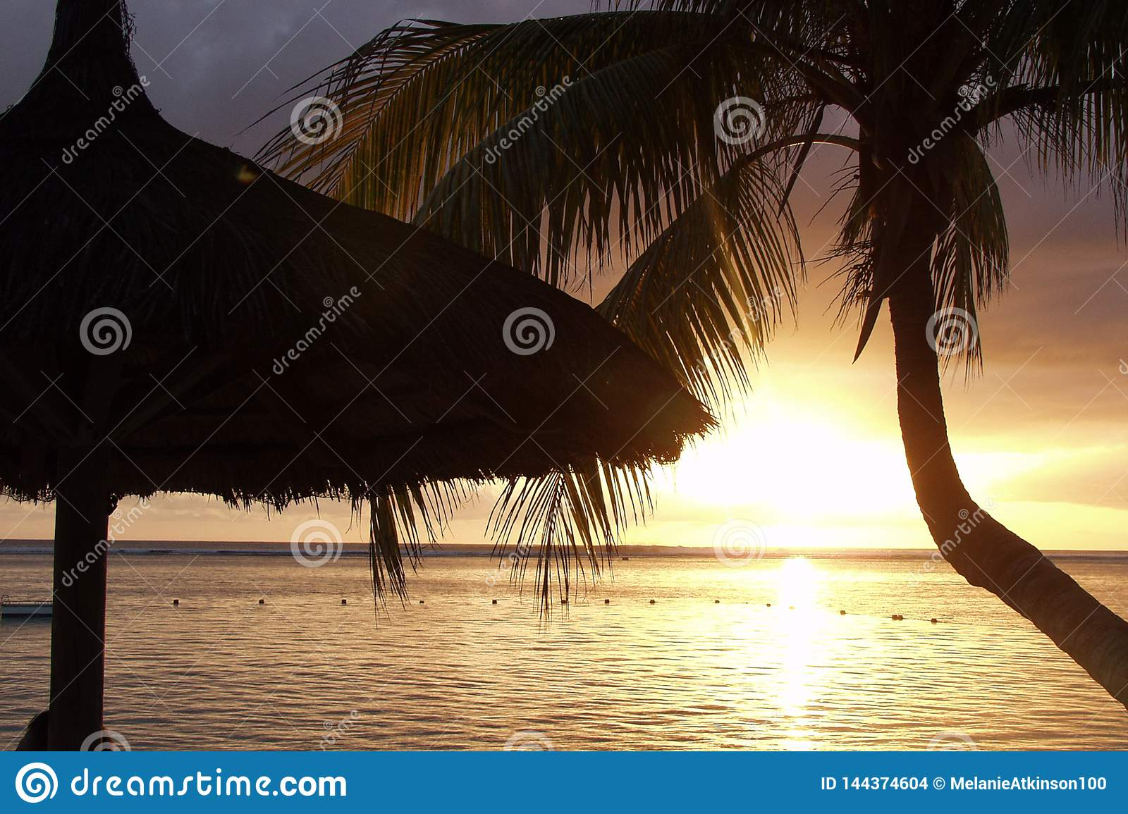 Silhouette of hut and palm as sun sets over the ocean