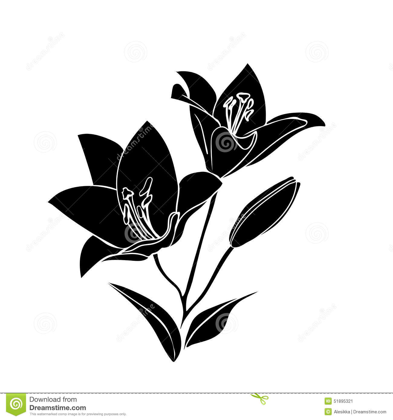 Silhouette Lily. Black outline on white background. Vector ...