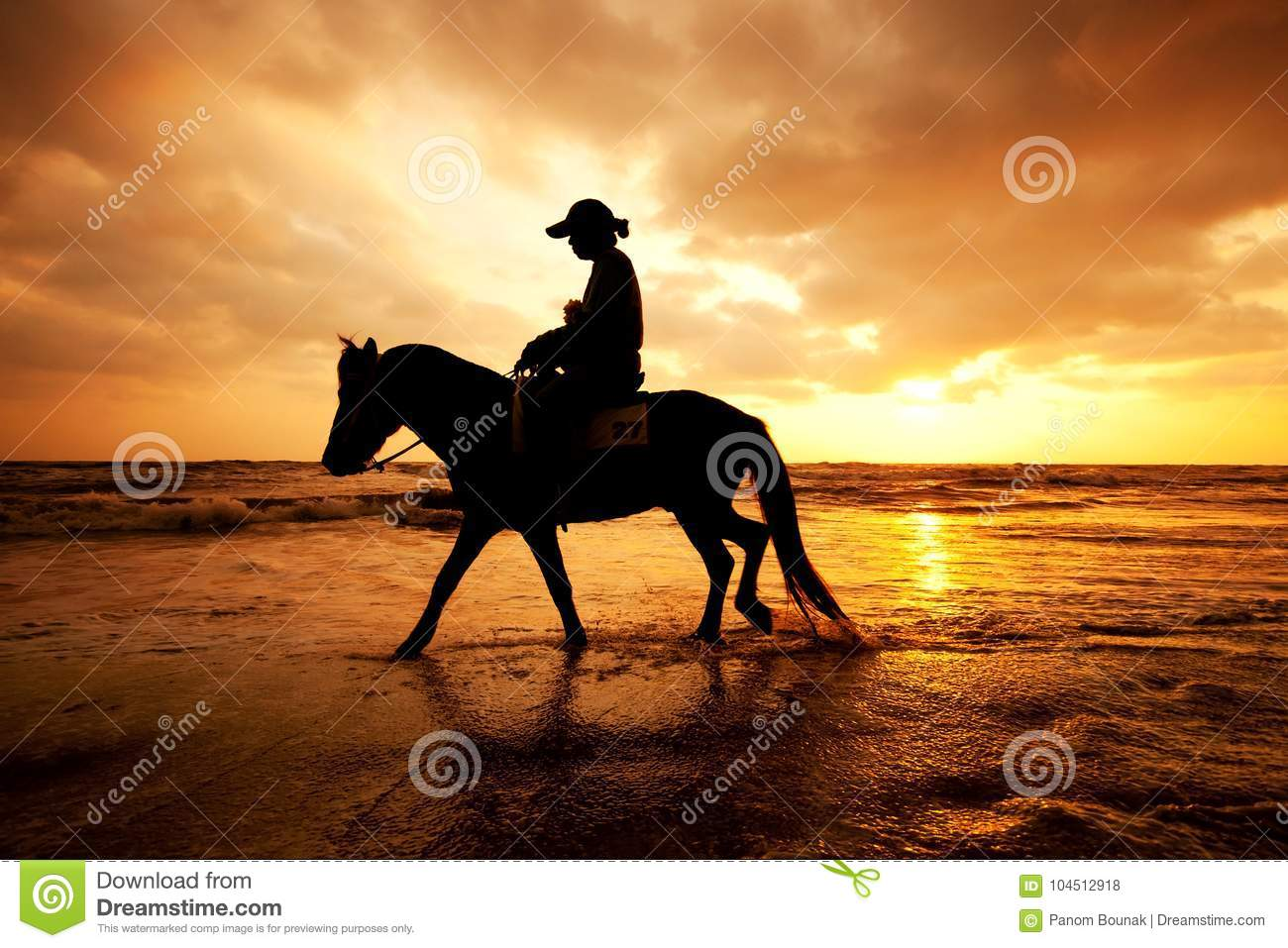 Silhouette man and horse on the beach with sunset sky