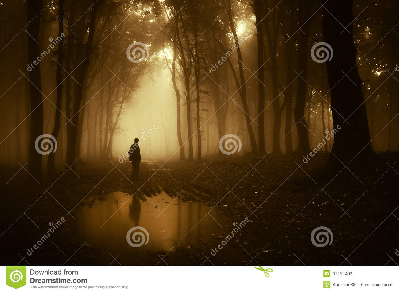 Download Silhouette Of Man Standing Near A Pond In A Dark Creepy Forest With Fog In Autumn Stock Photo - Image of lake, autumn: 37853402