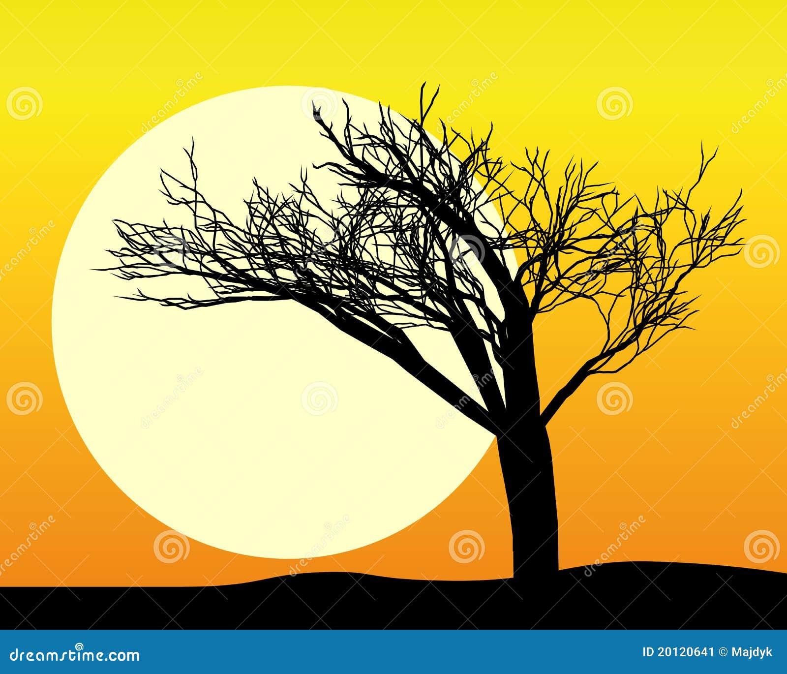 Silhouette noire d un arbre