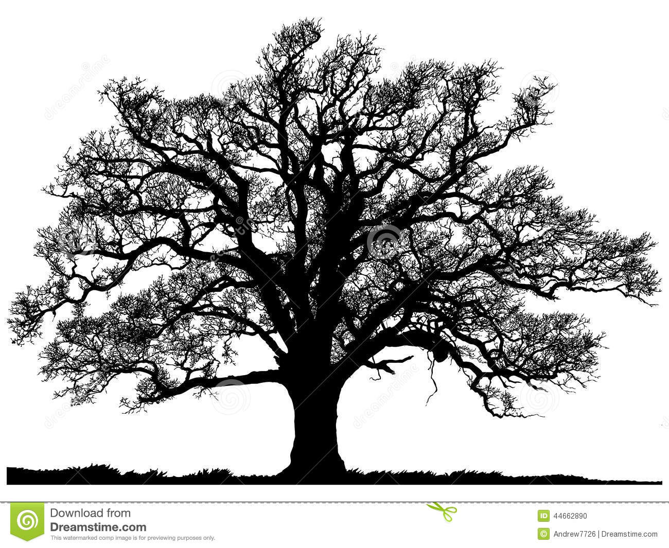 Silhouette of oak tree