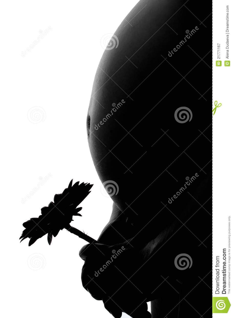 Silhouette Of Pregnant Woman On A White Background Stock