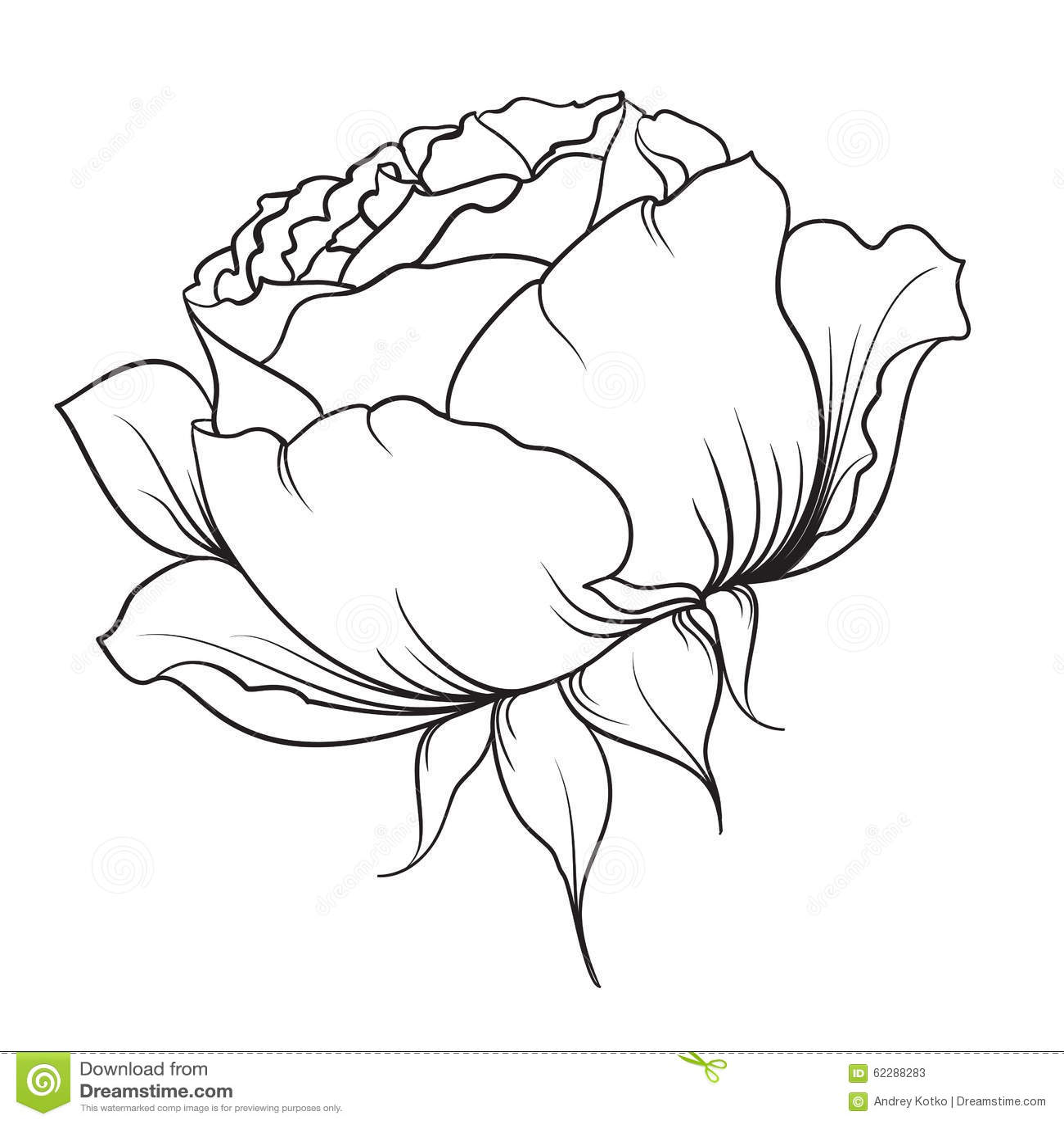Black Flower Pattern Silhouette Stock Illustration: Silhouette Of Rose Stock Vector
