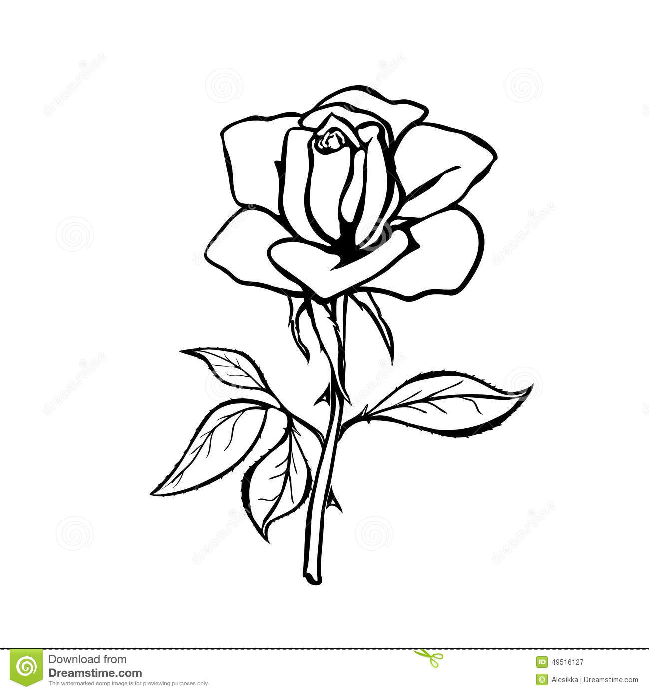 Realistic Rose Drawing Outline