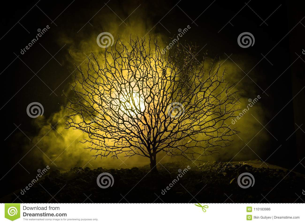 Silhouette of scary Halloween tree with horror face on dark foggy toned background with moon on back side. Scary horror tree with