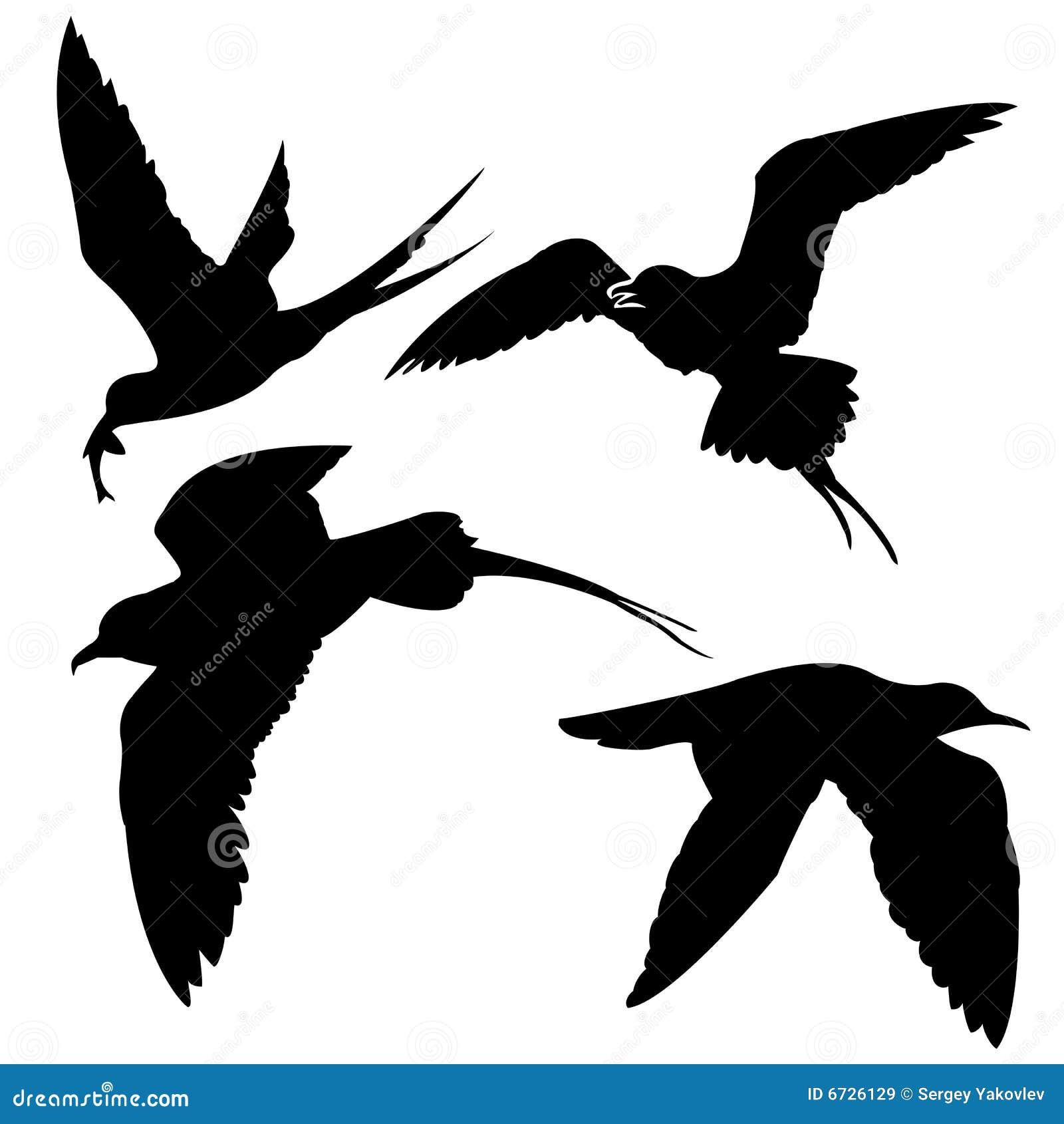 Silhouette Sea Birds Hummingbird Stencil
