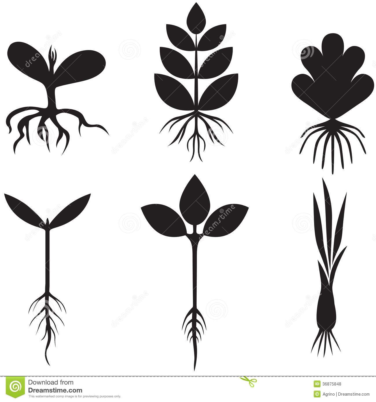 Silhouette sprout set stock vector. Image of spring ...