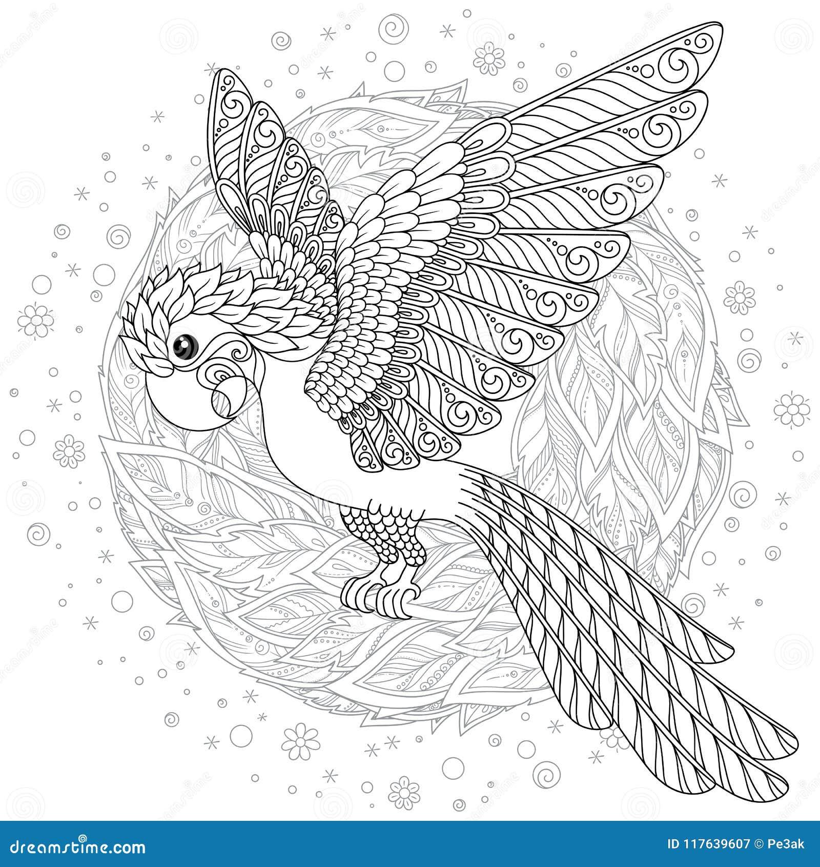Dessin Animé Cacatoès Tropical Perroquet Oiseaux Animaux Name