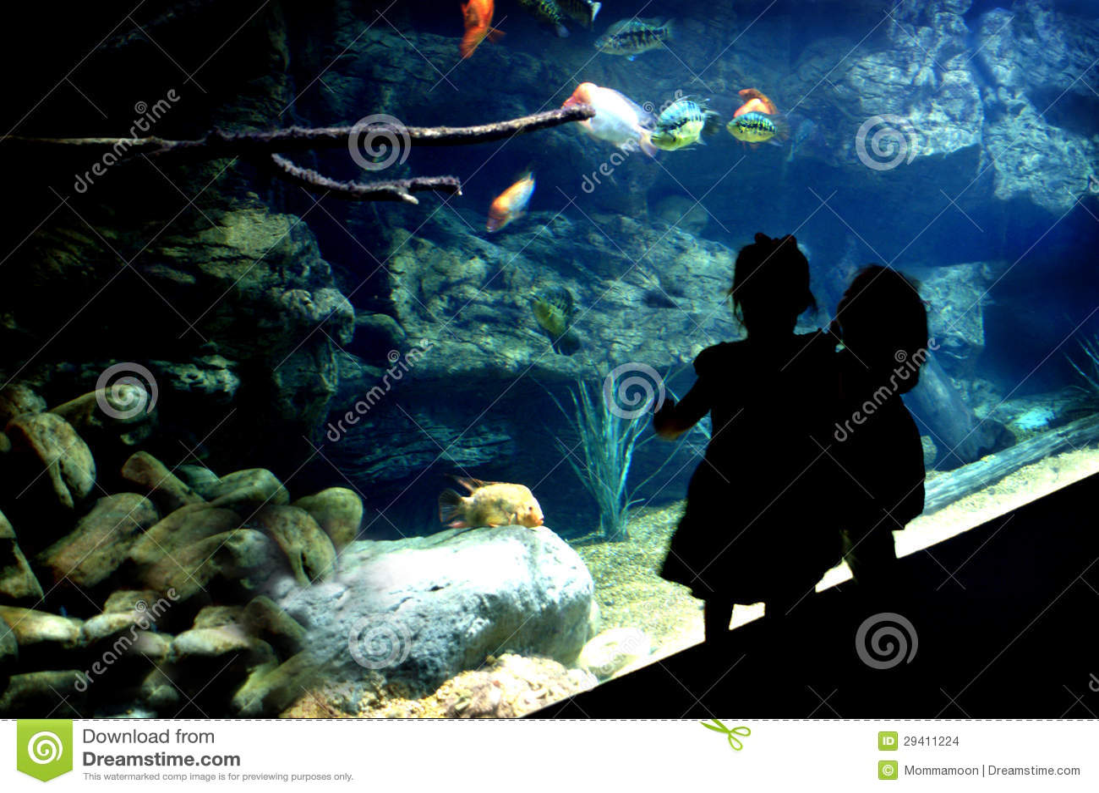 Silhouette Two Little Girls At Public Aquarium Stock