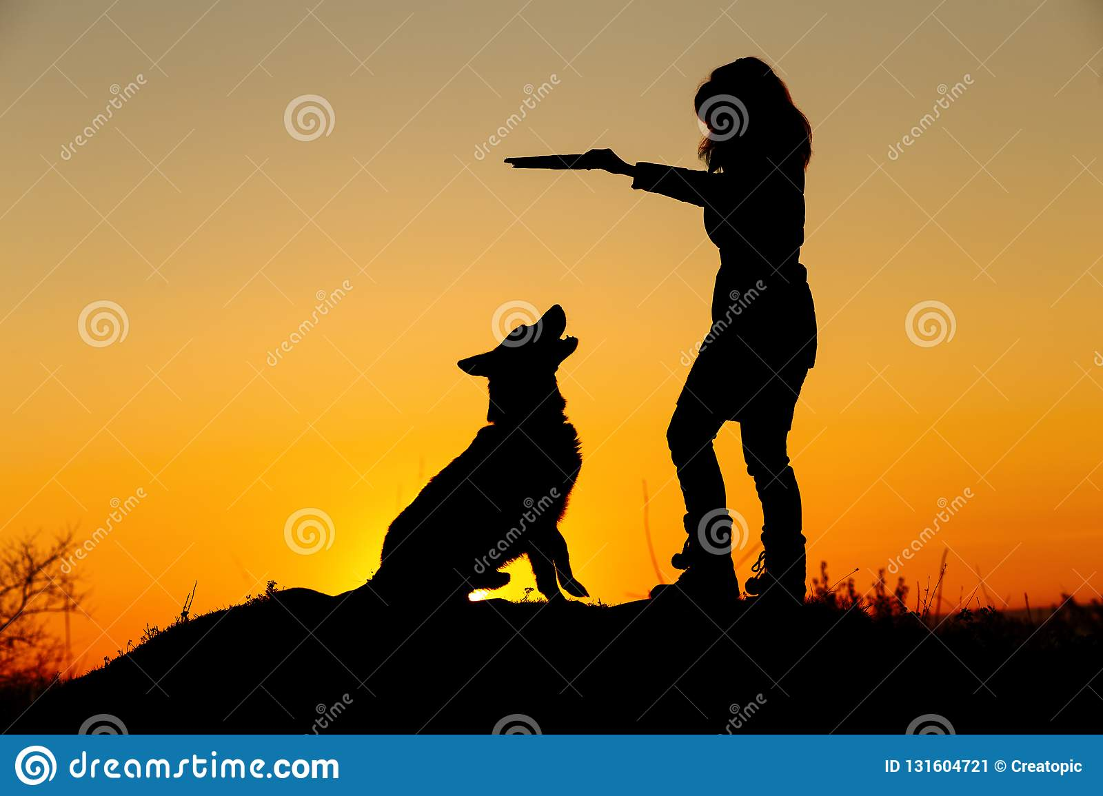 Silhouette woman walking with a dog in the field at sunset, a girl in an autumn jacket playing with pet throwing wooden stick on