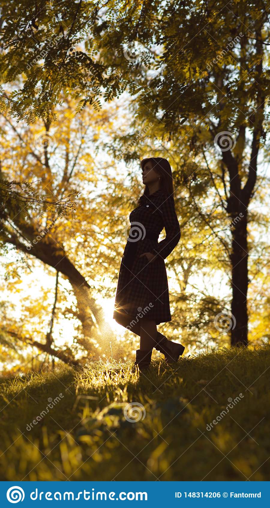 Silhouette of a young woman ascending on hill at sunset, figure girl in the autumn landscape in a dress, the concept of human and