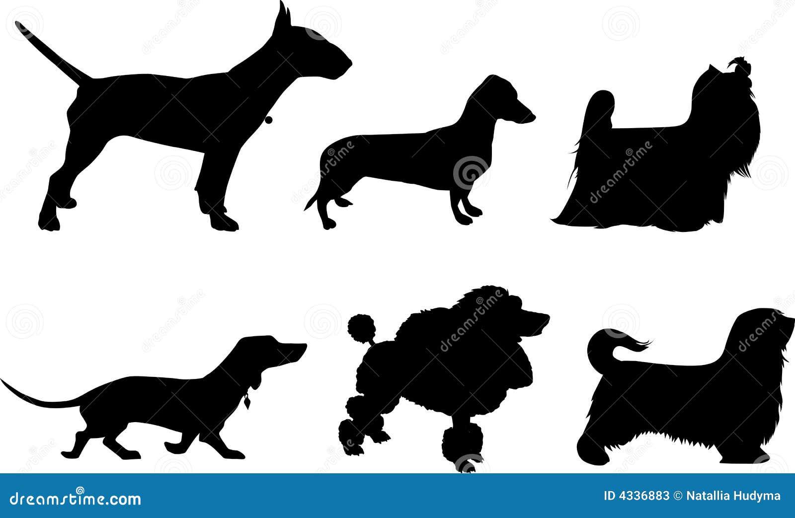Silhouetten van honden