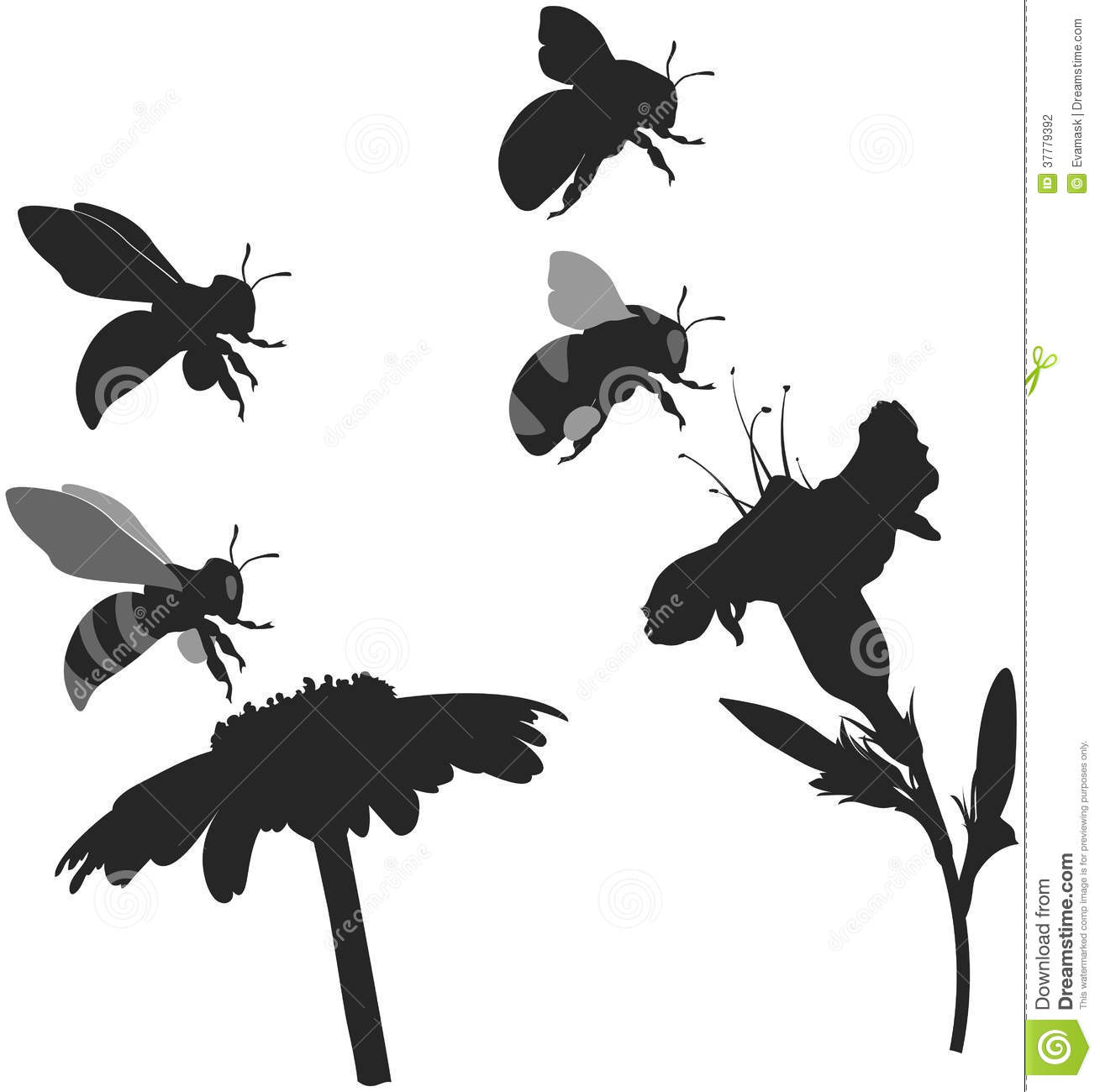 Silhouettes Bee And Bumblebee Stock Photography Image 37779392