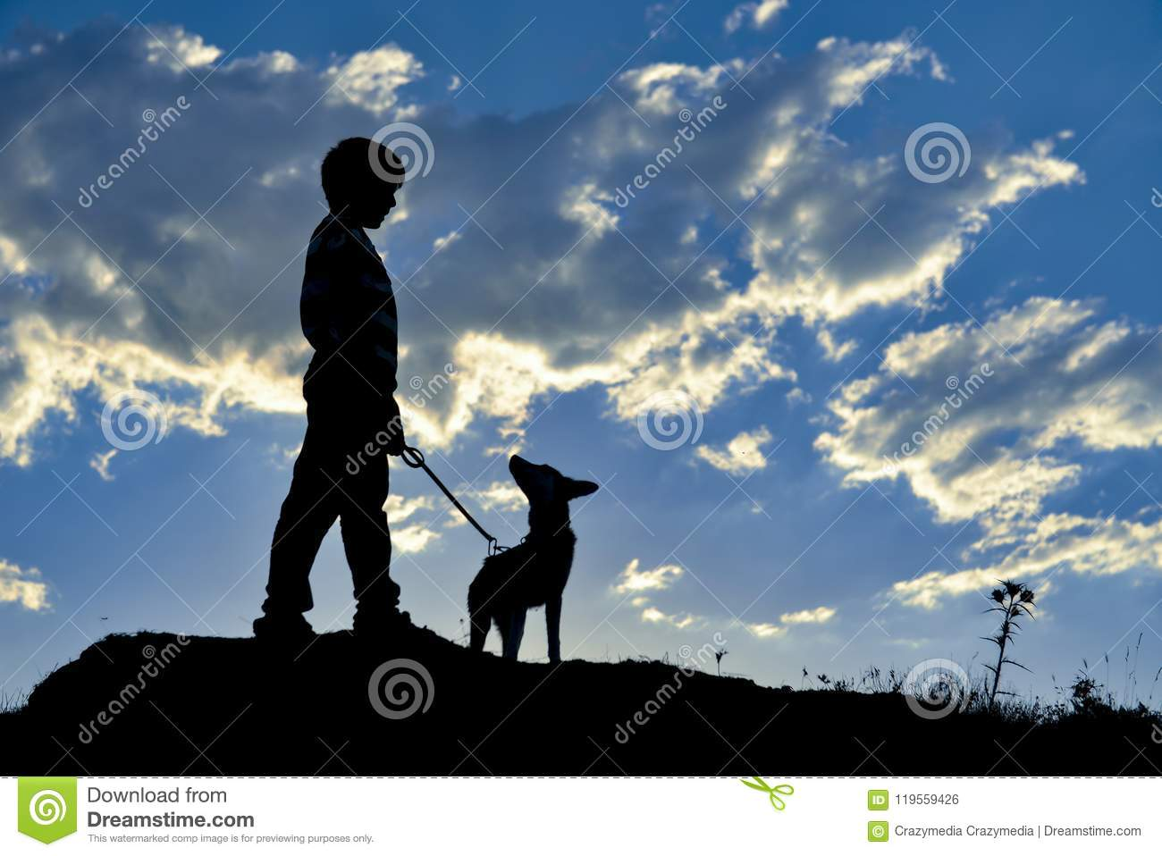 Boy with dog on hill