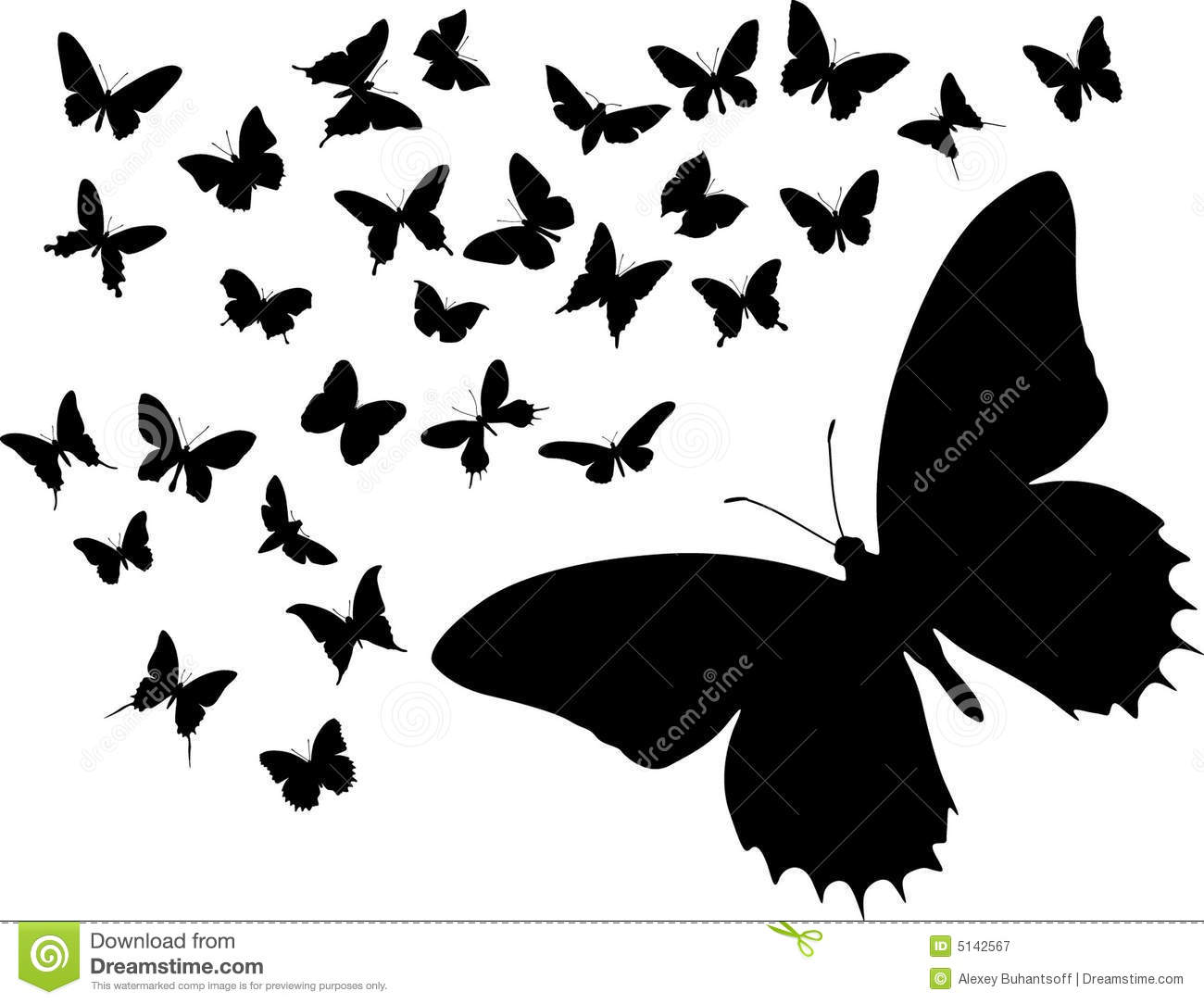 Butterflies Flying Together