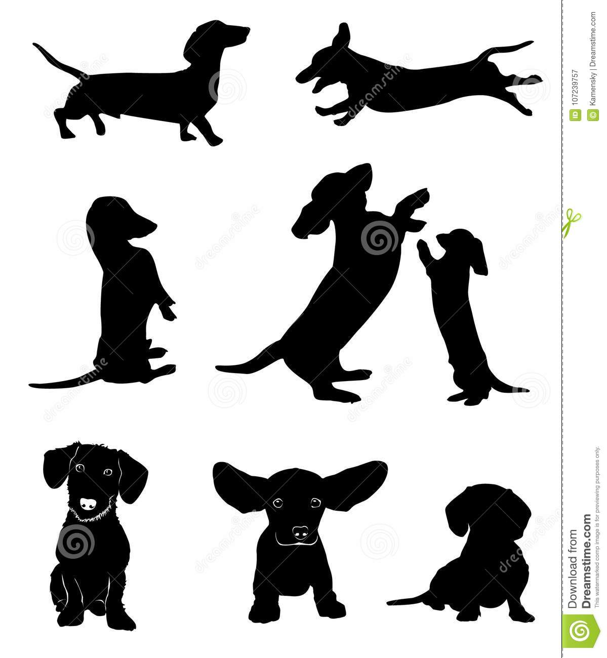 silhouettes of dachshunds vector illustration stock vector