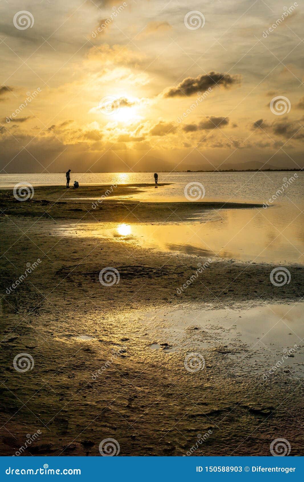 Silhouettes des personnes méconnaissables sur la plage au coucher du soleil avec la mer calme