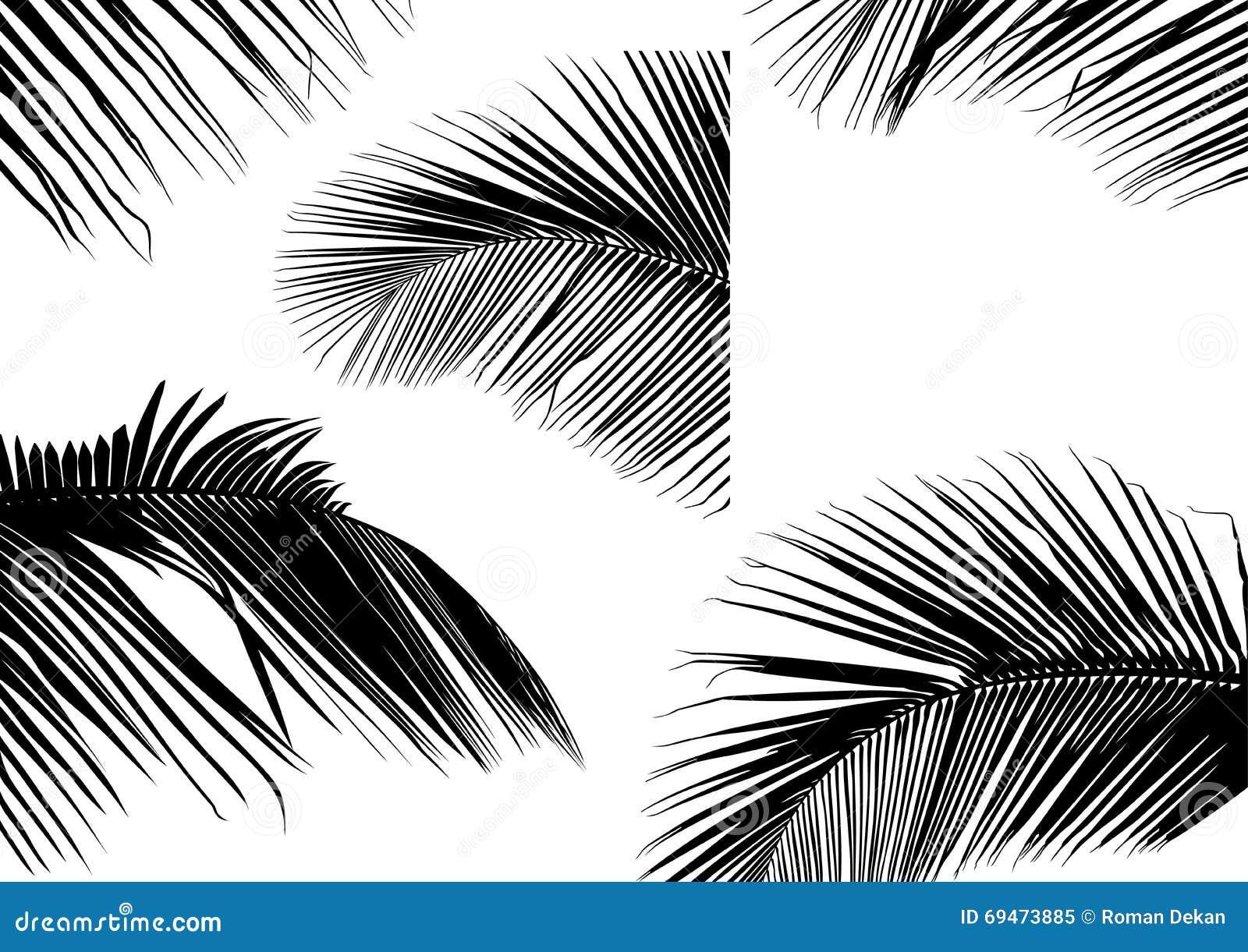 silhouettes en feuille de palmier illustration de vecteur illustration du tropique vecteur. Black Bedroom Furniture Sets. Home Design Ideas