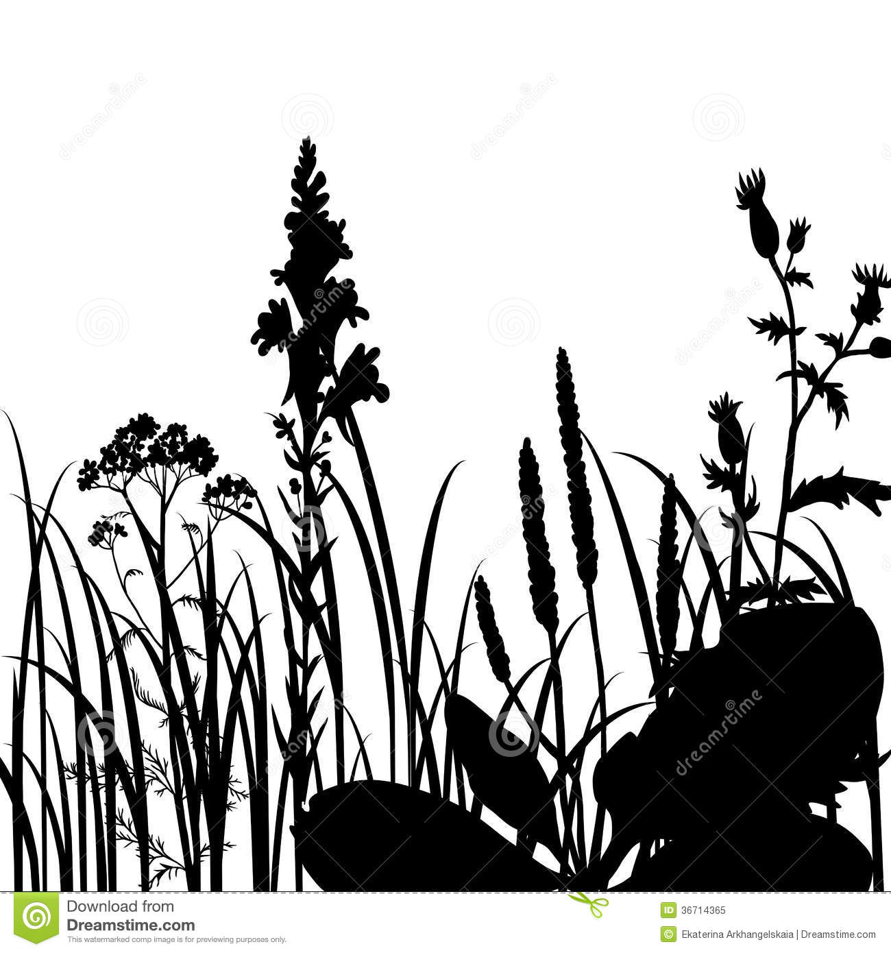 Marsh Grass Silhouette Silhouettes of flowers and grass, vector ...