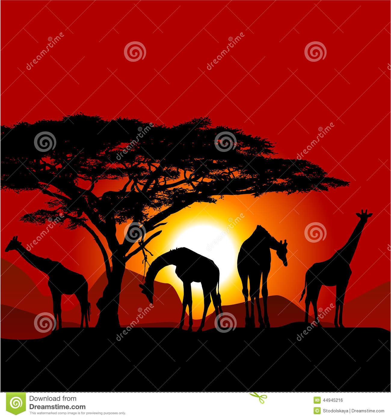 african sunset silhouettes western