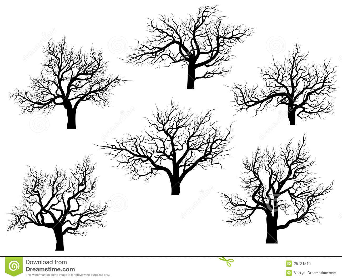 Silhouettes Of Oak Trees Without Leaves Stock Photo