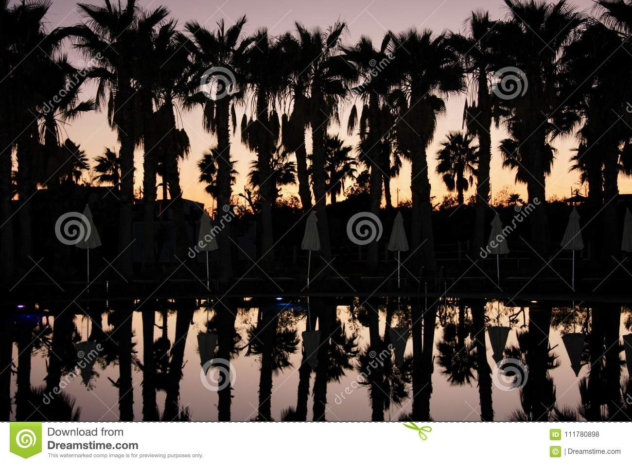 Silhouettes of palms row and umbrellas, on background of sunset sky.