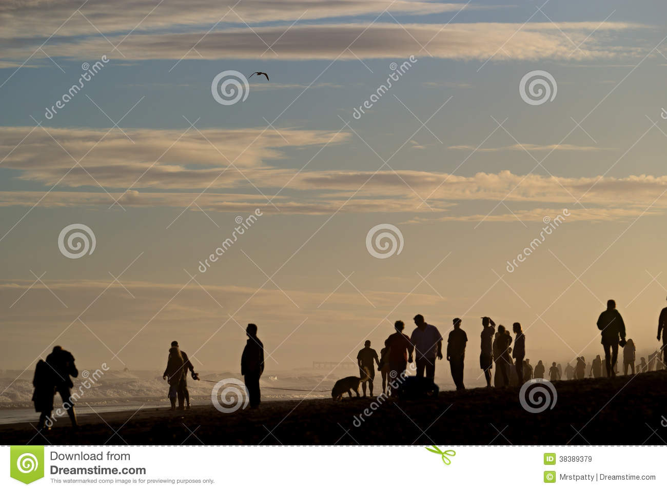 Silhouettes of people on a beach