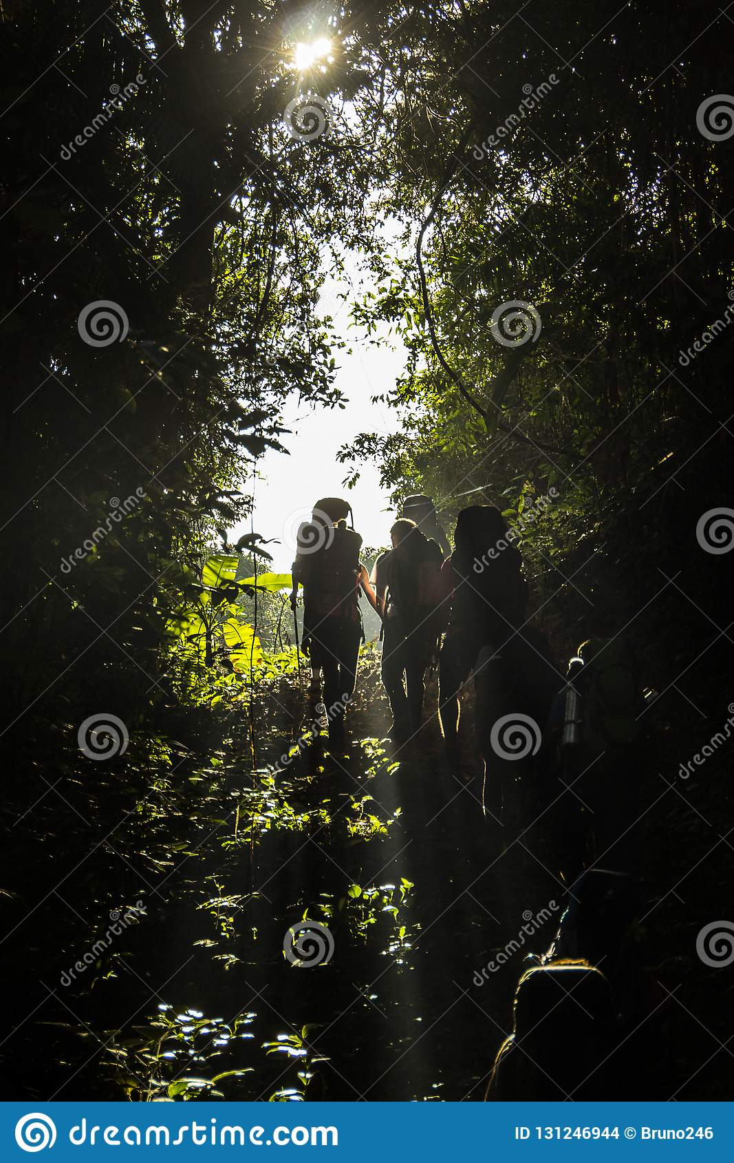 Silhouettes of people doing trail