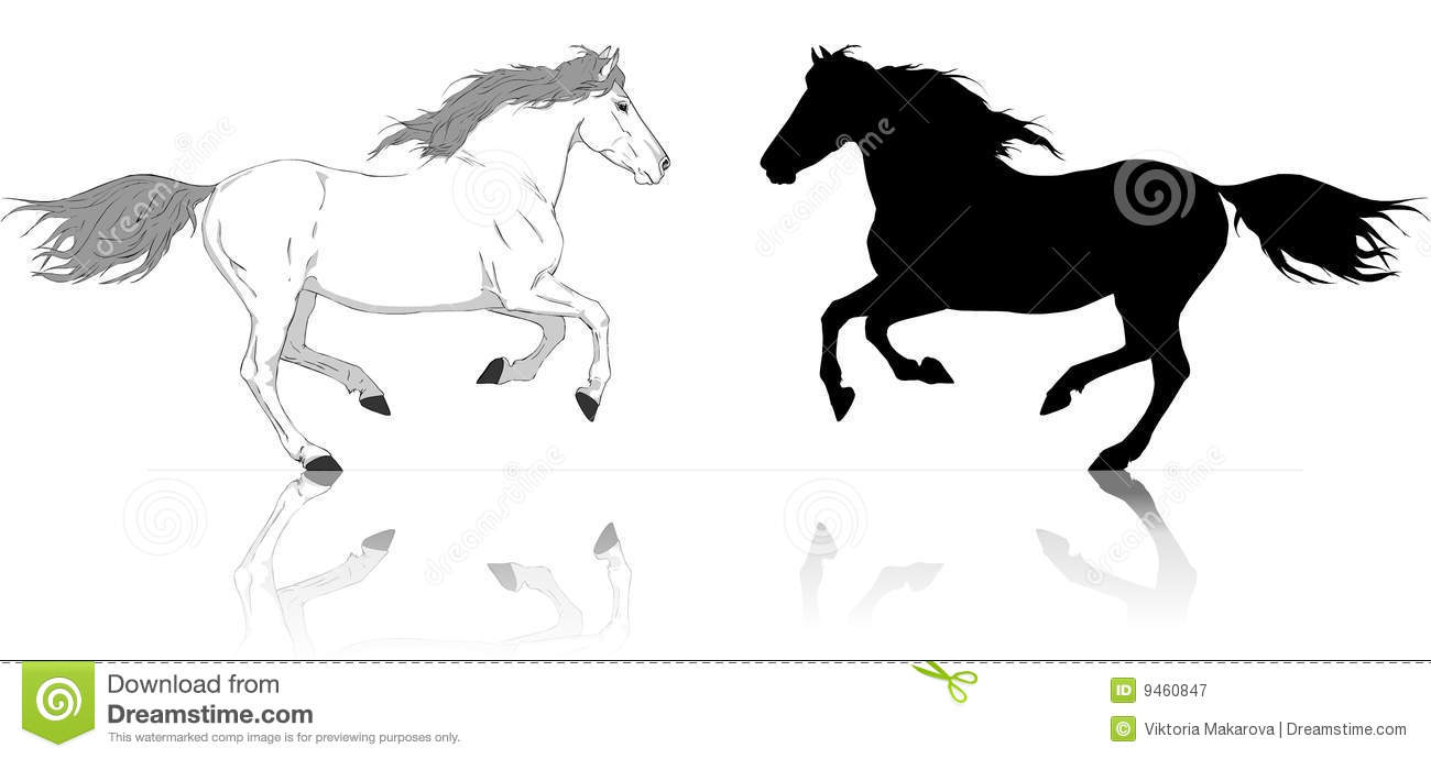 Silhouettes of runs horses white and black