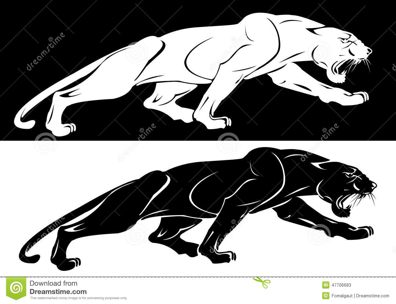 The Silhouettes Of The White And The Black Panthers Stock