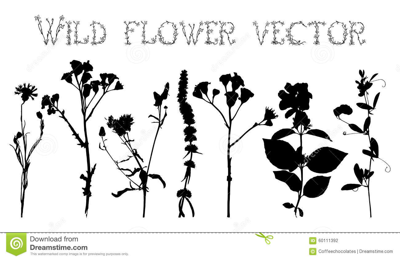foliage silhouette set stock vector image of design foliage