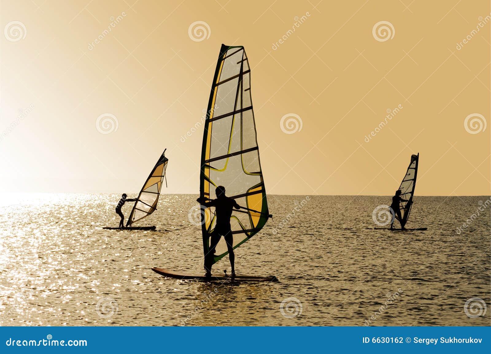 Silhouettes of windsurfers