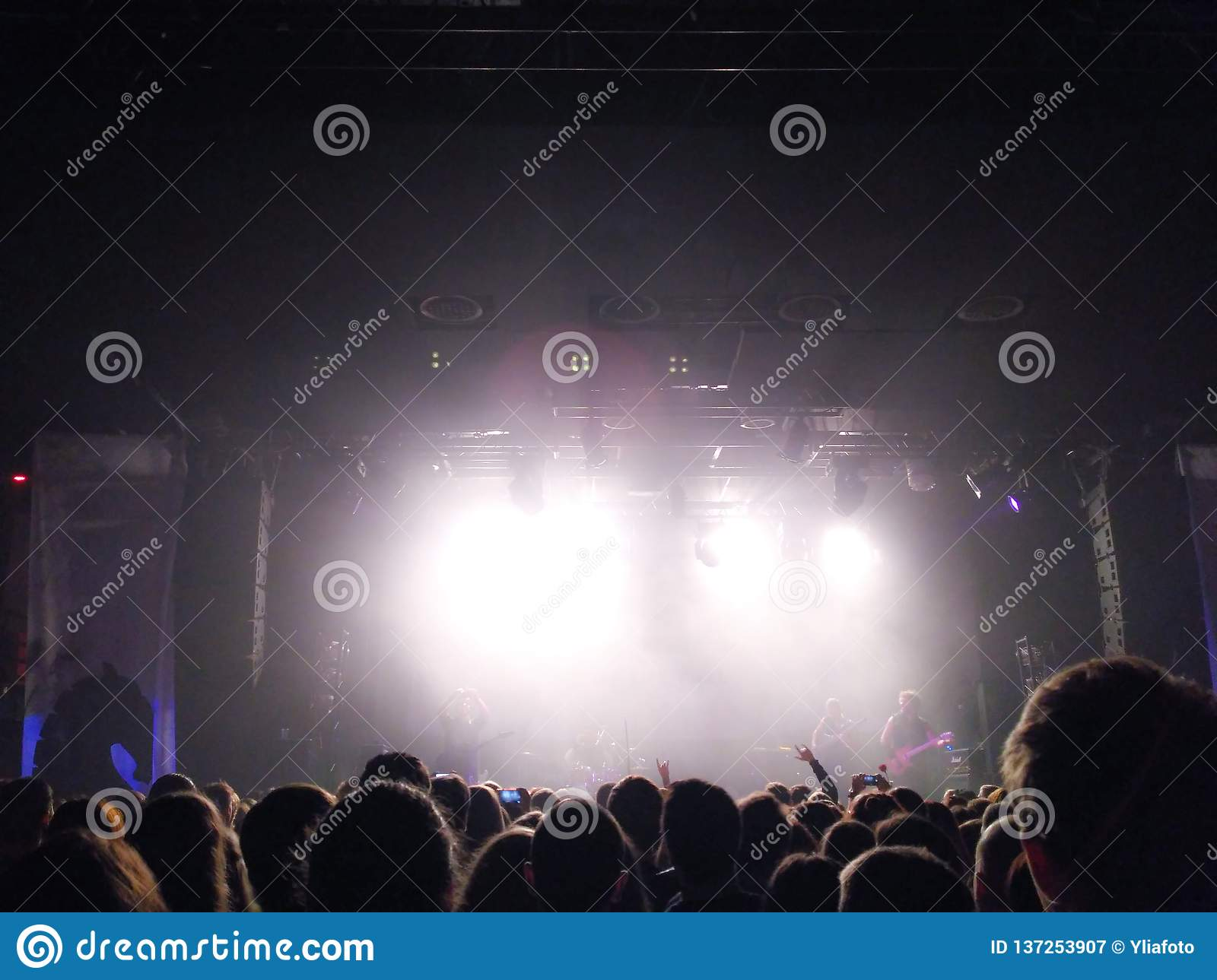 Silhouettes of young people before a scene at a concert. Rock group. Crowd of people at a concert