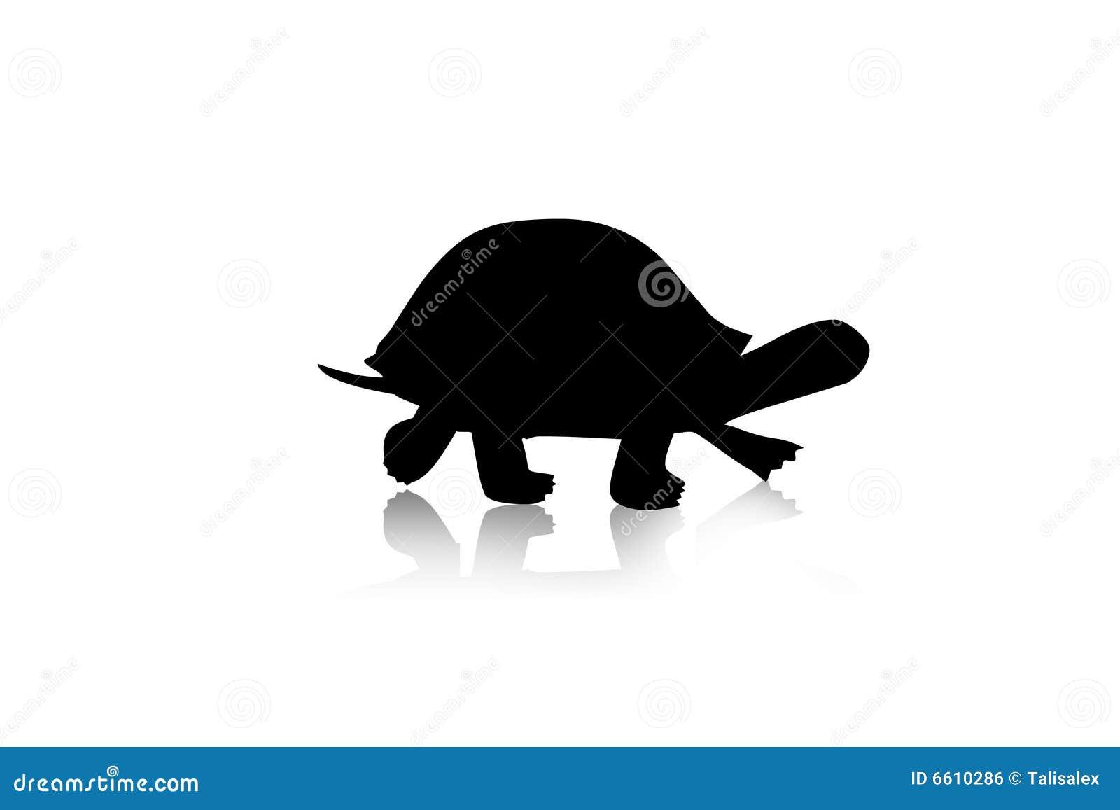 Silhouettesköldpadda