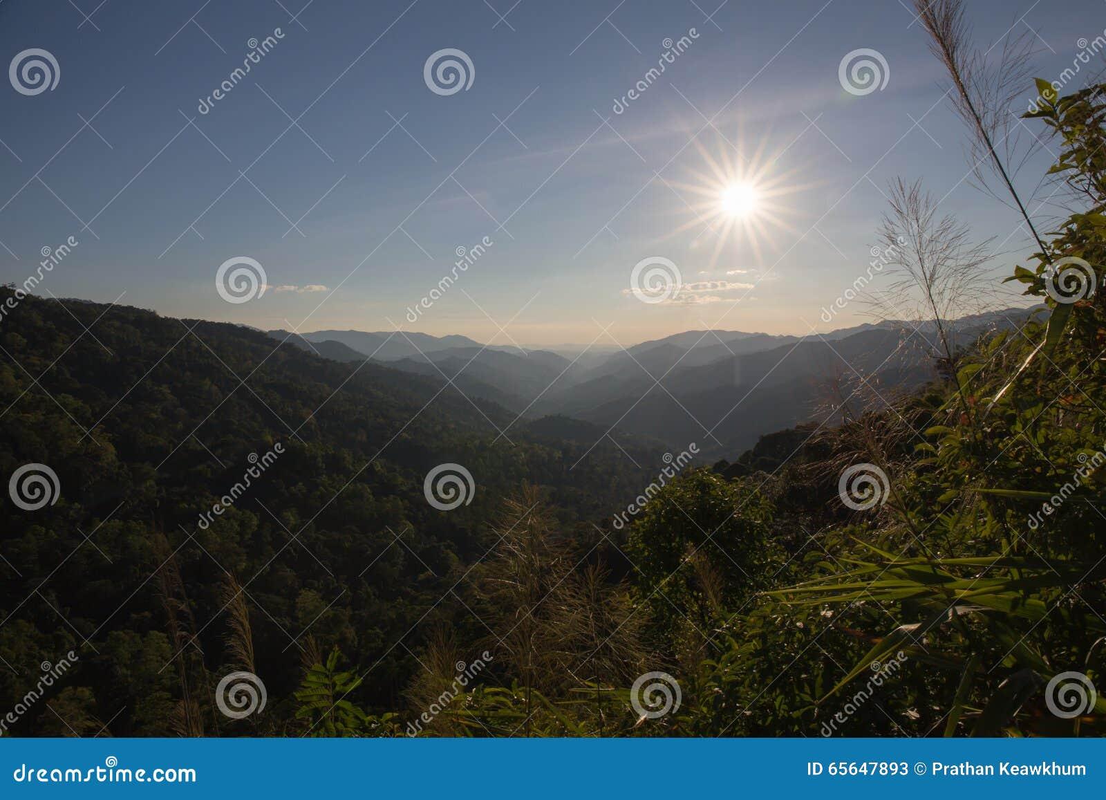 Silhouettez le soleil et la gamme de la montagne à la forêt tropicale tropicale dedans