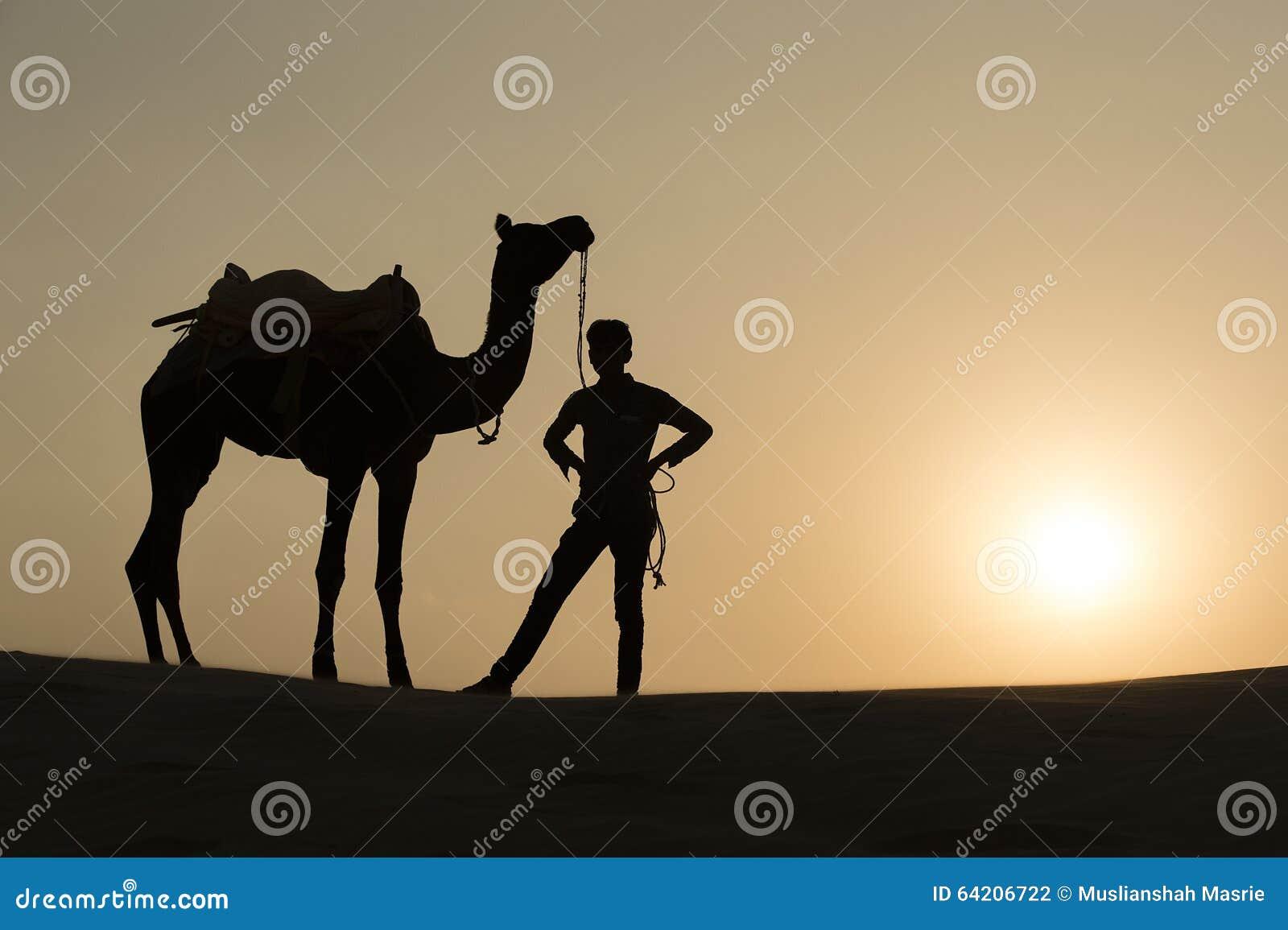 Silhoutte Of Camel Boy Crossing In The Thar Desert  Stock