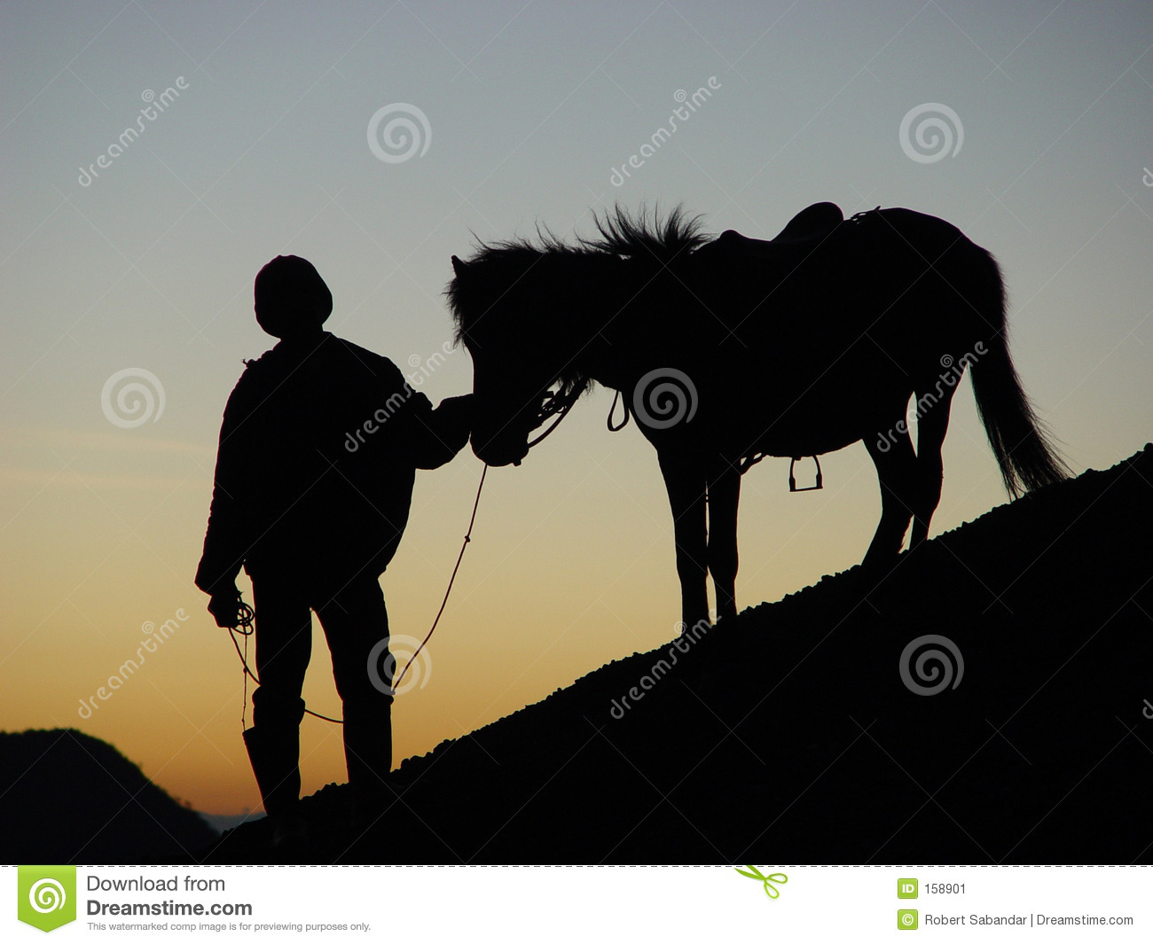 Silhoutte of Man and Horse