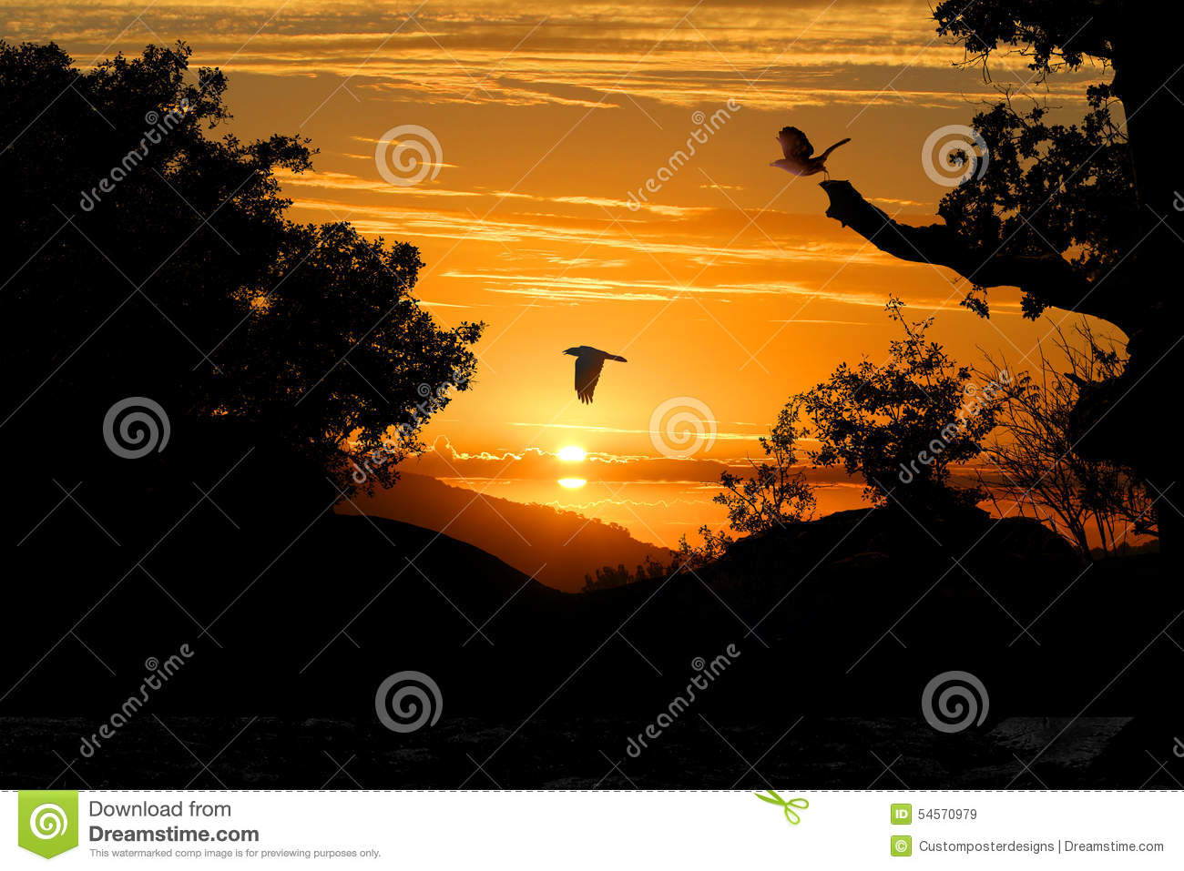 Download A Silhoutte Sunset Of Trees And Birds. Stock Image - Image of background, land: 54570979