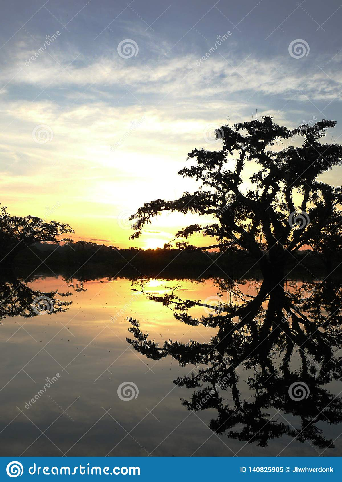 Silhoutte van een boom over een meer tijdens zonsondergang in een reis in cuyabeno, het grootste nationale park in Ecuatoriaanse