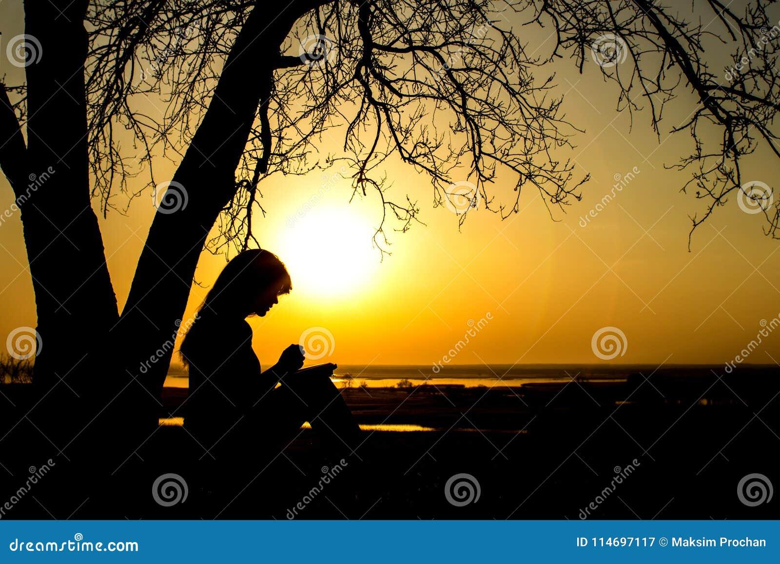 Silhueta da mulher que reza ao deus no witth da natureza a Bíblia no por do sol, no conceito da religião e na espiritualidade